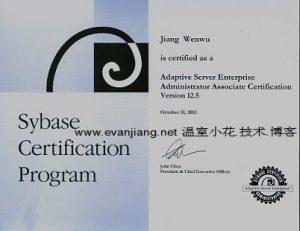 sybase数据库管理员证