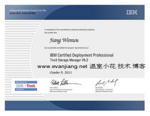 IBM TSM 实施专家证